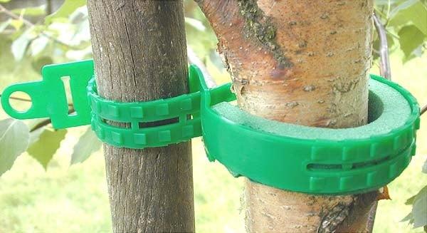 Collier de tuteurages d'arbres 2 secondes facile et rapide